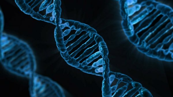 How old do you look Study finds an answer in our genes