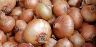 Natural Onion Compound ONA Fights Cancer