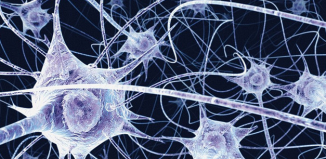 Chemical imbalance in the brain may lead to schizophrenia, study reveals