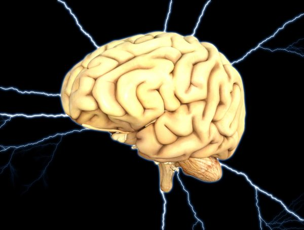 The Female Brain is More Active: Study Shows